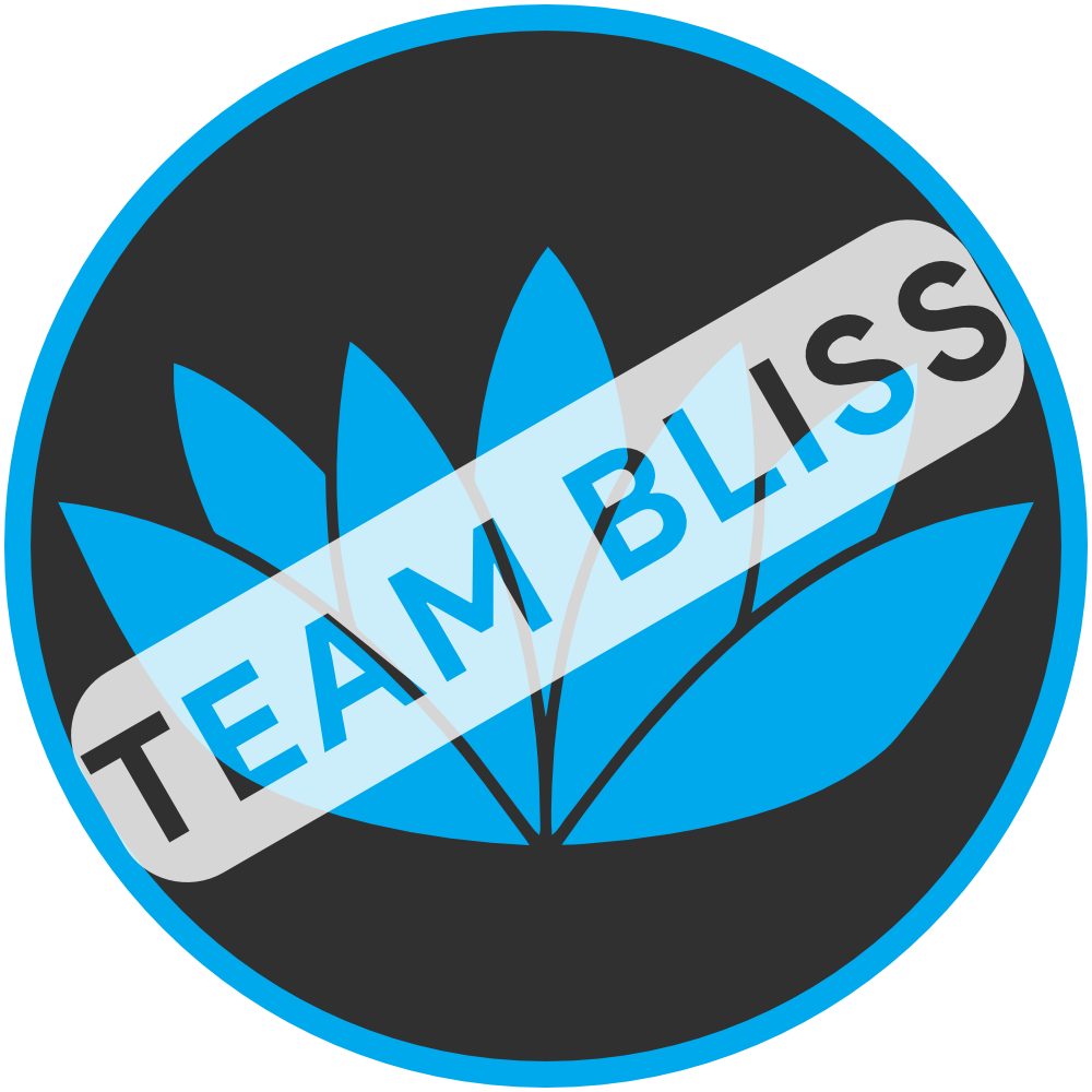 _team_bliss_2.png