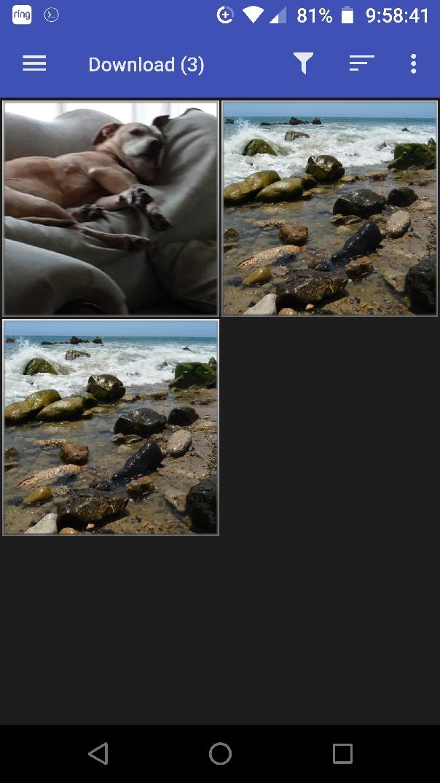AF_8_image_tutorial.jpg