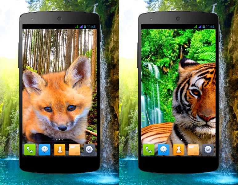 animal_phone_0.jpg
