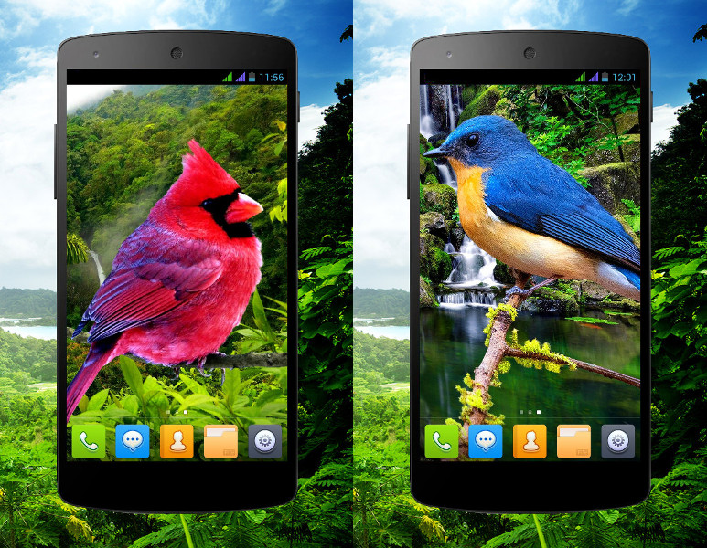 3D birds parallax Live wallpapers - Android Themes  Android