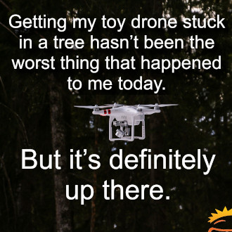 Drone-stuck-in-a-tree.jpg.330.jpg