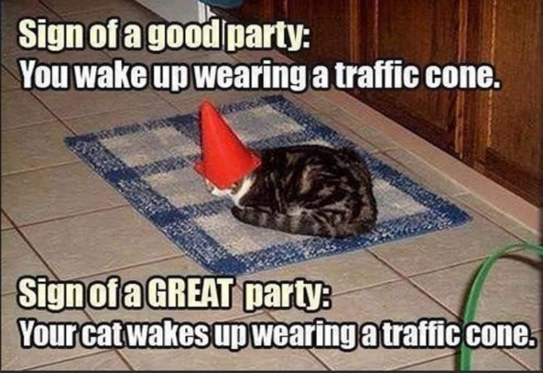 halloween-2014-best-funny-memes-10.jpg