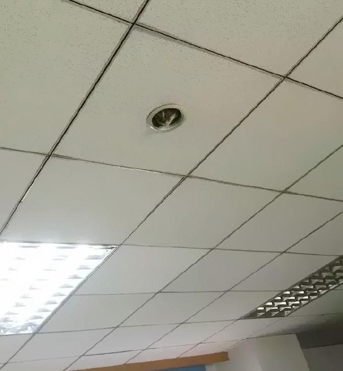 office-ceiling-cat-monitoring-omocha-no-uma-1.jpg