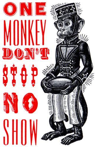 one Monkey don't stop.jpg